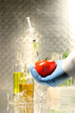 Hand holding tomato with syringe Royalty Free Stock Photos