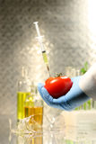 Hand holding tomato with syringe Stock Photo