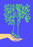 Hand holding tree. Drawing of the hand holding tree Stock Photos