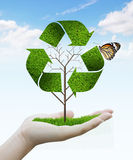 Tree as a recycle symbol. Hand holding tree as a recycle symbol Royalty Free Stock Photo
