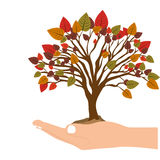 Hand holding a tree with colorful leafy branches. Illustration Royalty Free Stock Images