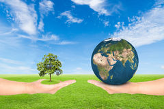 Hand holding tree and earth Royalty Free Stock Photography
