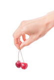 Hand holding  two cherries on white background Royalty Free Stock Photos