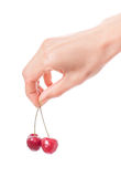 Hand holding two cherries on white background Royalty Free Stock Photography
