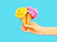 Hand holding two ice cream cone with flowers over blue Stock Photos
