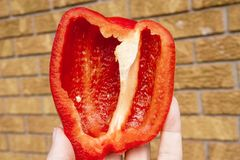 Hand holding up half a fresh raw sweet red bell pepper, defocuse Royalty Free Stock Photo