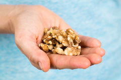 Hand holding walnuts royalty free stock image