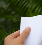 Hand holding white paper with nature background. Stock Image