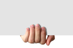 Hand Holding White Paper Sheet. A hand is holding a white piece of paper royalty free stock photo