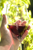Hand holding wine glass Royalty Free Stock Image