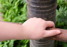 Hand Holding Wooden Fence in A Garden Royalty Free Stock Photos