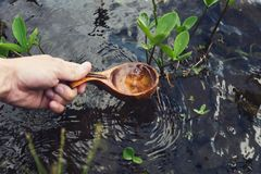 Hand Holding Wooden Ladle Extracting Water from Stream Royalty Free Stock Image