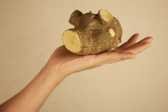 Hand holding a wooden pig Stock Photo