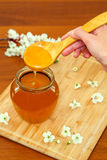 Hand holding wooden spoon with honey Stock Image