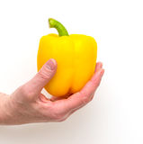 Hand holding yellow Bell Pepper isolated Stock Photos