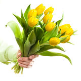 Hand holding yellow flowers Stock Photography