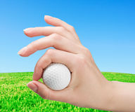 Hand holds a ball for game in golf Royalty Free Stock Photography