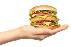 Hand holds big hamburger on white background Stock Images