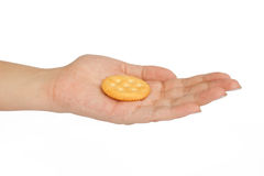 Hand that holds the biscuit Stock Image