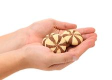 Hand holds biscuits of a chocolate cloves. Stock Photos