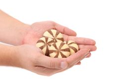 Hand holds biscuits of a chocolate cloves. Stock Photography