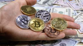 Hand Holds Different Coins of Cryptocurrency on a Table with US Dollars are Rotating. Crypto currency in Macro. Crypto Currency Close-up. Virtual money on stock footage