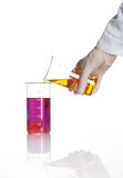 Hand holds flask with reagent to make a reaction Stock Photography