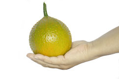 Hand holds gac fruit on a white background Royalty Free Stock Photography