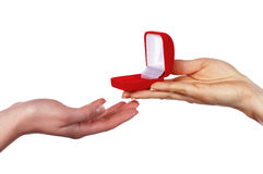 The hand holds a gift box Stock Photos
