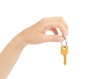 Hand holds a gold key Stock Image
