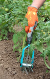 Hand holds hand cultivator Stock Image