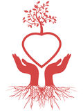 Hand holds heart tree Stock Images