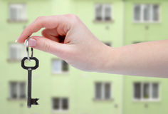 Hand holds a key Stock Image