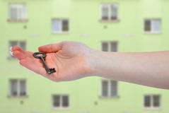 Hand holds a key Stock Photo