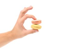 Hand holds macarons. Royalty Free Stock Images