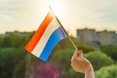 Hand holds Netherlands flag an open window. Background blue sky,. Silhouette of the city, sunset royalty free stock photography