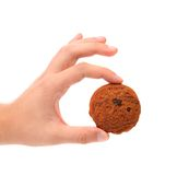 Hand Holds Oatmeal Raisin Cookie. Stock Images