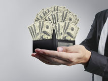 Hand holds  purse and money from open wallet Royalty Free Stock Photos