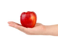 Hand holds red apple. Stock Photography