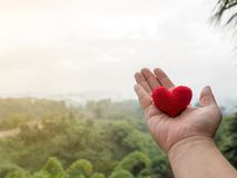 The hand holds the red heart.Forest, green trees and misty mountains. background copy space for text. Valentines day, love concept. And love background Royalty Free Stock Images