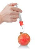 Hand holds the syringe on pomegranate Royalty Free Stock Photo