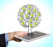 A hand holds a tablet with drawn tree with dollar signs. Royalty Free Stock Image