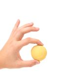 Hand holds traditional French yellow macaron. Stock Photography