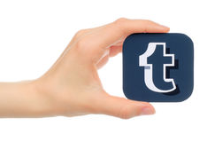 Hand holds Tumblr icon on white background Stock Photos