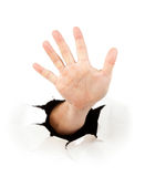 Hand through a hole in paper. Over white background Stock Images