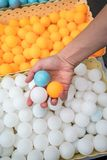 Hand holiding ping-pong balls. royalty free stock photography