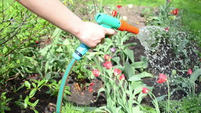 Hand hose flower water stock video footage