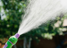 Hand with hose sprinkle watering plants in the garden.  royalty free stock image