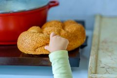The hand of a hungry child hold and break a piece of bread. stock images