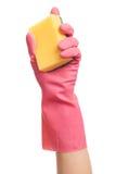 Hand i en rosa handskeinnehavsvamp Arkivfoton